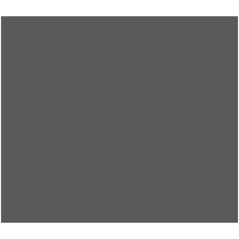 Data-Enviornment-Icon